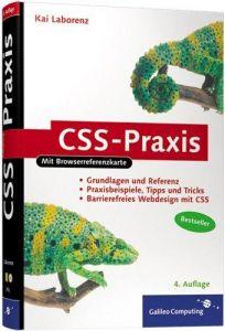 CSS-Praxis: Grundlagen und Referenz, Barrierefreiheit, CSS und
